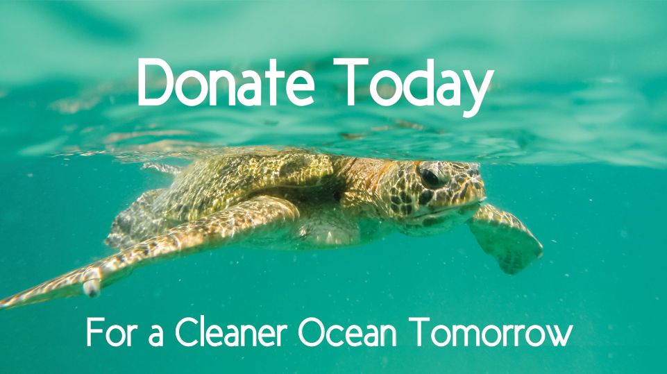 Turtle swimming with 'donate today for a cleaner ocean tomorrow'