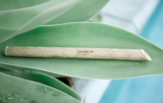 straw free bamboo straw on leaf