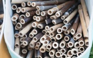bamboo straws in bag