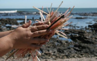 plastic straws by beach in hand
